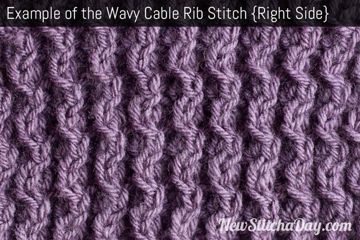 Example of the Wavy Cable Rib Stitch Right Side