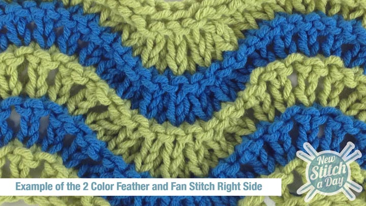 Example of the 2 Color Feather and Fan Stitch Right Side