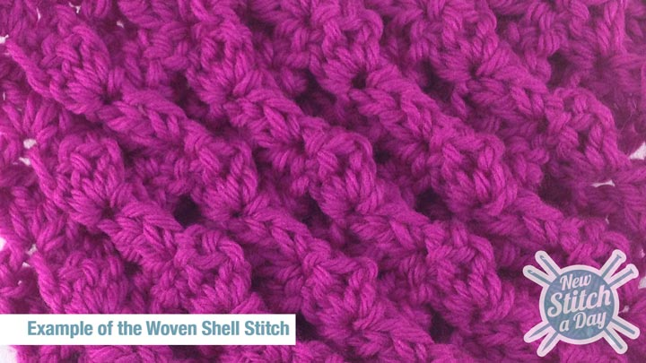 Example of the Woven Shell Stitch