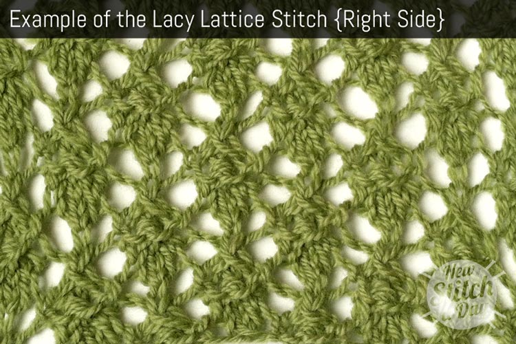 Example of the Lacy Lattice Stitch {Right Side}