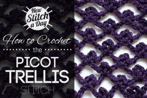 How to Crochet the Picot Trellis Stitch