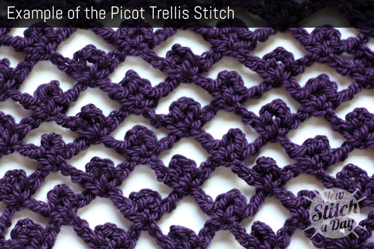 Example of the Picot Trellis Stitch