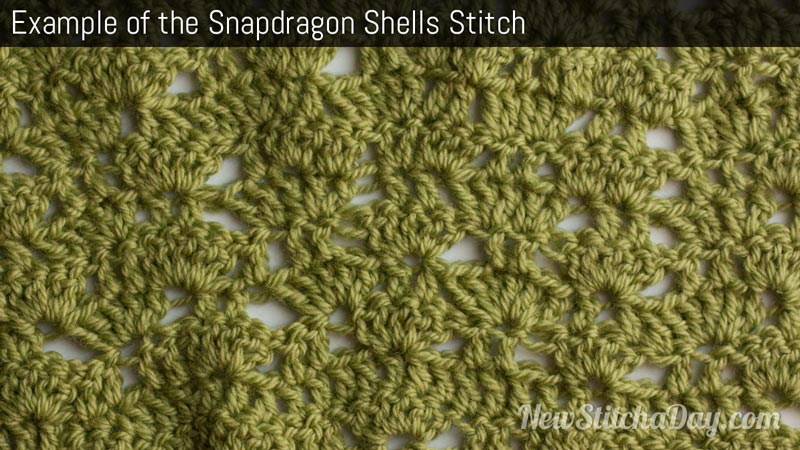 Example of the Snapdragon Shells Stitch