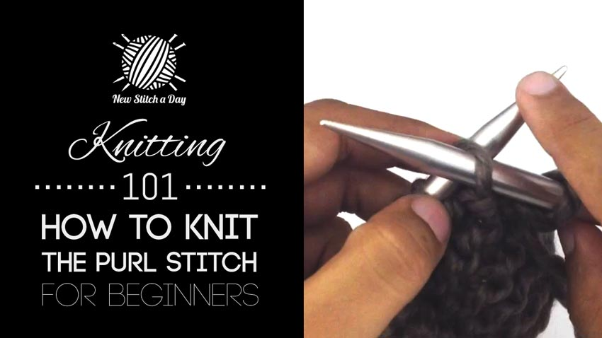 Knitting 101: How to Knit the Purl Stitch for Beginners NEW STITCH A DAY