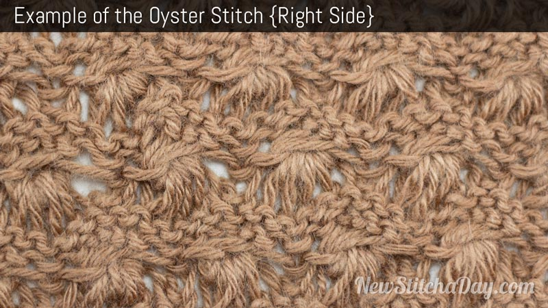 Knitting Stitches Examples : The Oyster Stitch :: Knitting Stitch #222 NEW STITCH A DAY