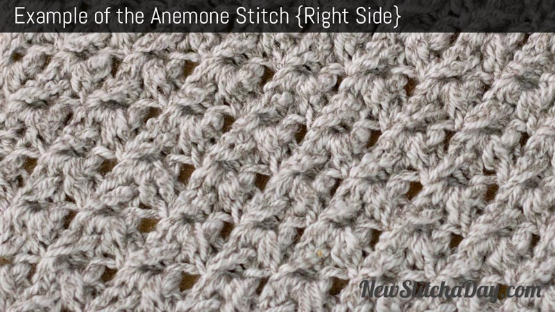 Example of the Anemone Stitch. (Right Side)
