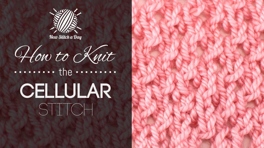 New Stitch A Day Knitting Patterns : How to Knit the Cellular Stitch NEW STITCH A DAY