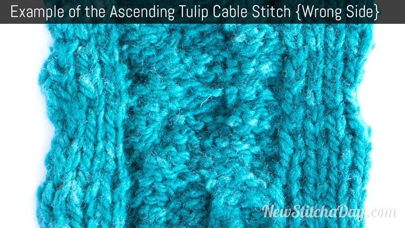 Example of the Ascending Tulip Cable Stitch. (Wrong Side)
