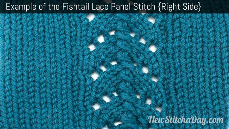 Example of the Fishtail Lace Panel Stitch. (Right Side)