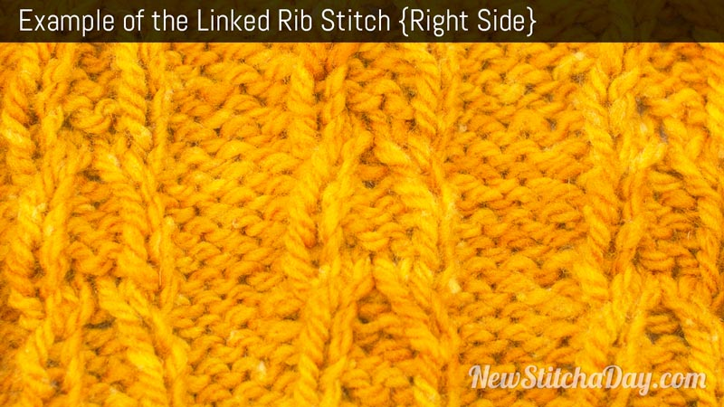 Example of the Linked Rib Stitch. (Right Side)