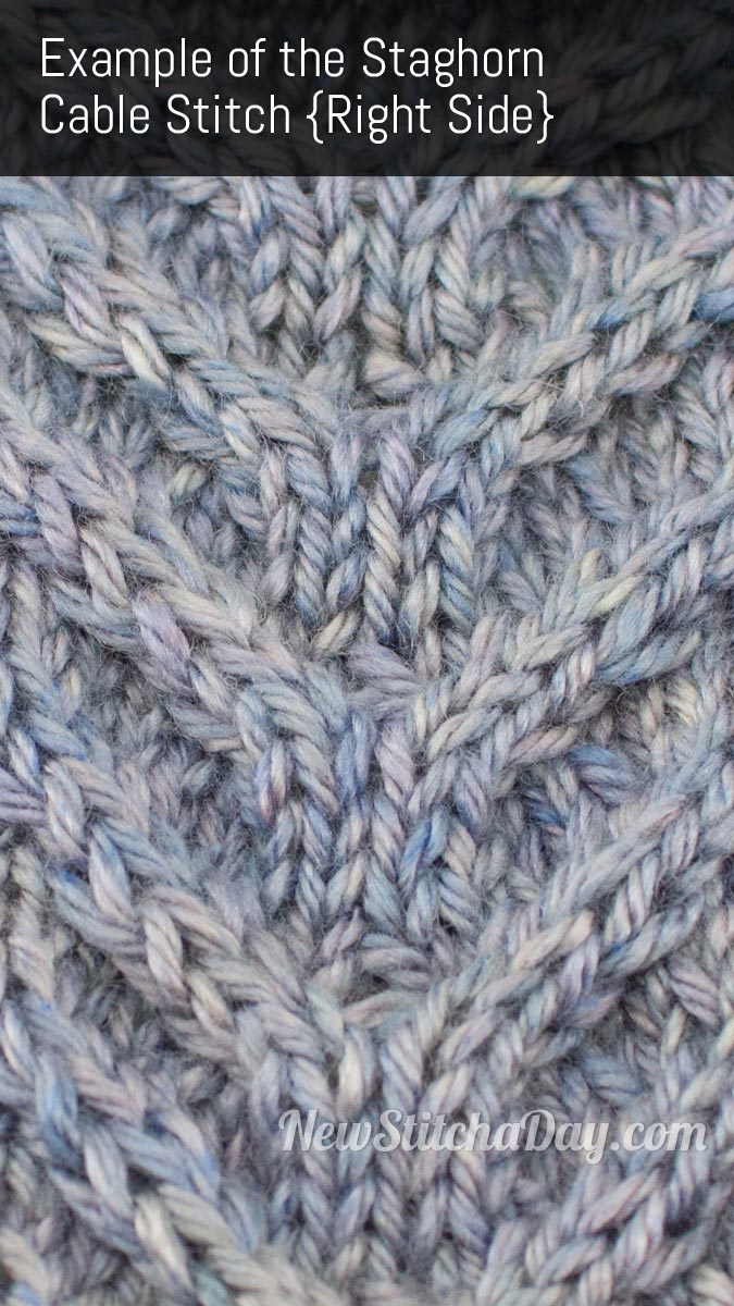 Example of the Staghorn Cable Stitch. (Right Side)